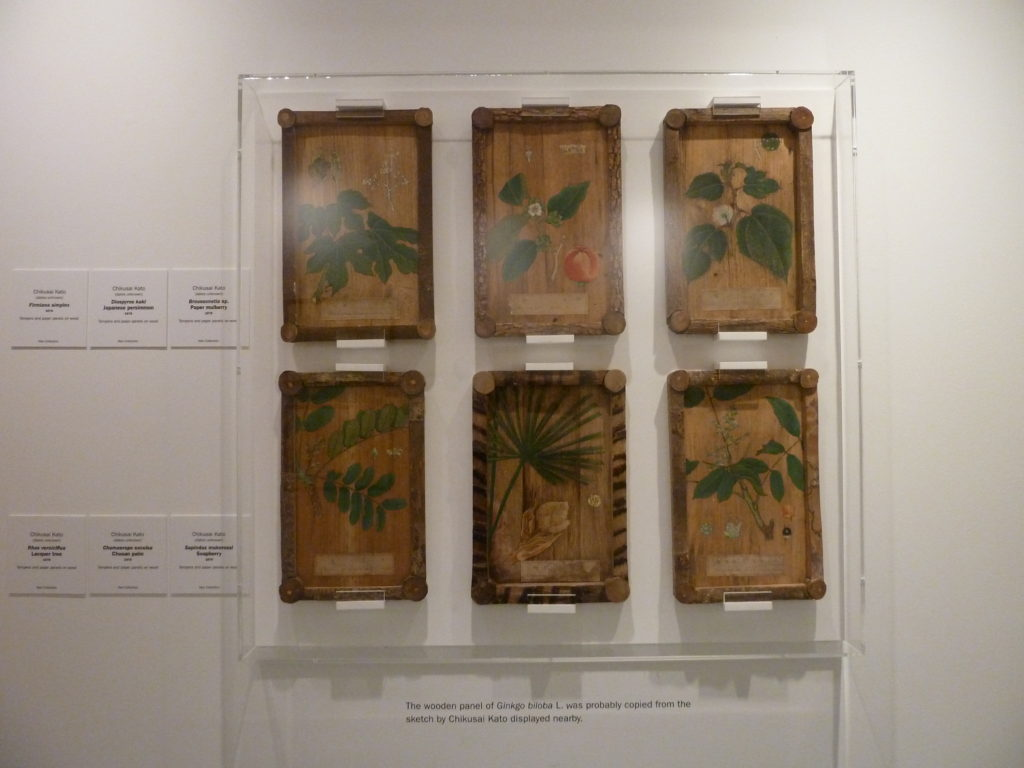 Japanese wood Panel, displayed in an acrylic box frame